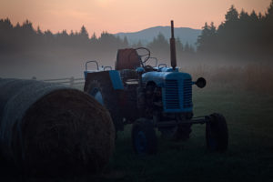 After the harvest - Po sklizni