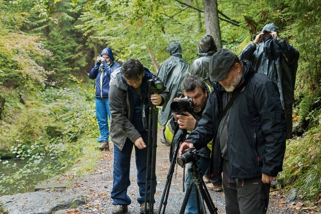 Workshop v Českém Švýcarsku