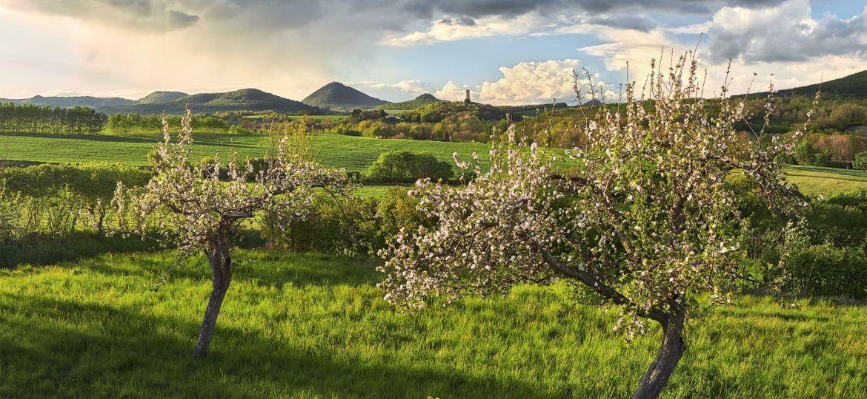 A living landscape --- Živá krajina